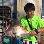最新釣果!アオリイカ、真鯛、サゴシ・・・・。