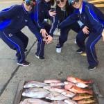 最新釣果!アオリイカ!真鯛!甘鯛!レンコ鯛!赤ヤガラ、マトウ鯛、マフグ、・・・・・・。